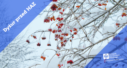 Dyżur przedHarcerską Akcją Zimową